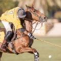 Picture Matthias Gruber | www.Polo-Looks.com