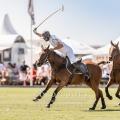 Bild: Matthias Gruber/ GruberImages.com